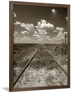 Old Railroad Tracks by Aaron Horowitz