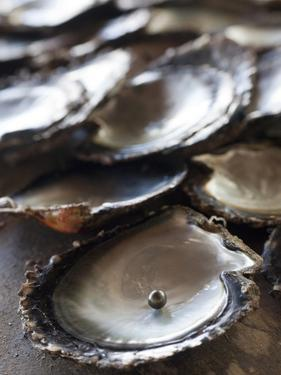 A Black Pearl in an Oyster Shell by Aaron Huey
