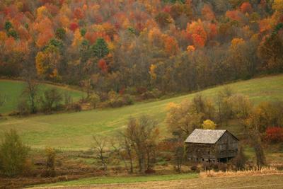 An Old Outbuilding on a Farm Near Cambridge, New York by Aaron Huey