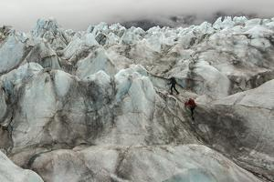 Climbers on lower Ruth Glacier in Denali National Park and Preserve. by Aaron Huey