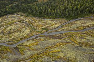 The Sustina River in Denali National Park. by Aaron Huey