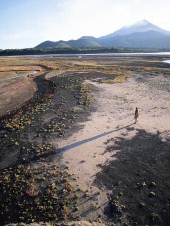 Man Walking on Dry Lake Bed with Llaima Volcano in Distance, Conguillio National Park, Chile