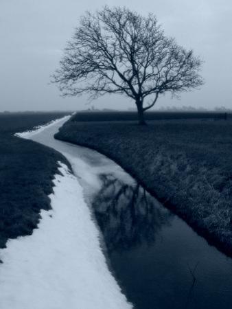 Landscape Photograph, a Winter Scenery in Spanbroek, the Netherlands by Abdul Kadir Audah