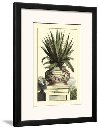 Antique Munting Aloe I by Abraham Munting