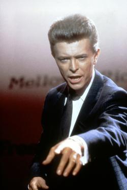 Absolute Beginners (photo)