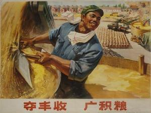 Abundant Harvest Chinese Cultural Revolution Rice Farmer
