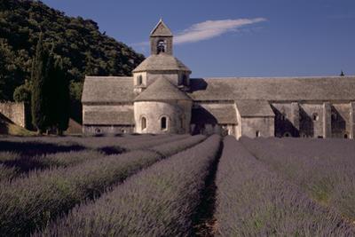 Abbaye Notre-Dame De Senanque, Gordes - Provence, France