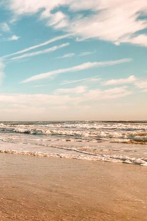 Beach Shores Panel III