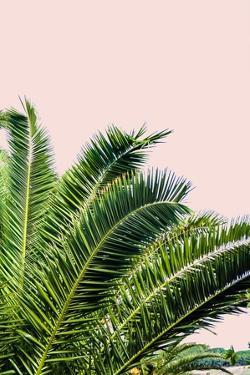 Tropical Leaves On Blush I by Acosta