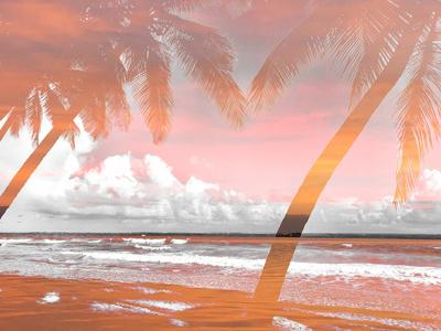 Two Superimposed Palms