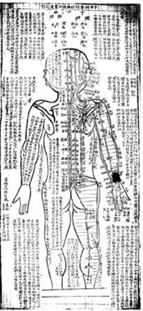 Acupuncture Chart for the Rear of the Body, Japanese, 19th Century