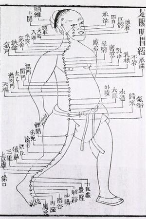 Acupuncture Points and Meridian for Stomach and Foot Disorders, 1875