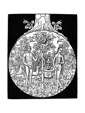 Adam and Eve, 1505
