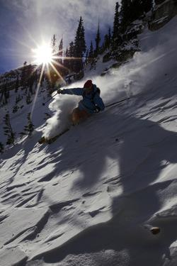 A Male Skier Travels Down the Mountain at Snowbird, Utah by Adam Barker