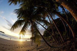 Sunset on the Beach in Costa Rica Makes for a Very Pleasant Walk. Playa Espadilla, Costa Rica by Adam Barker