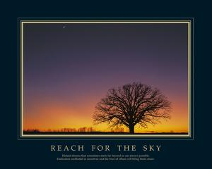 Reach For The Sky by Adam Brock