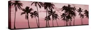 Sunset Blush by Adam Brock