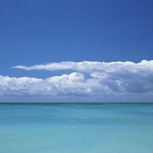 Tropical Waters II by Adam Brock