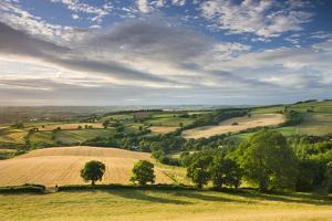 Beautiful Sky Above Summer Countryside, Raddon Hill, Crediton, Devon, England. Summer by Adam Burton