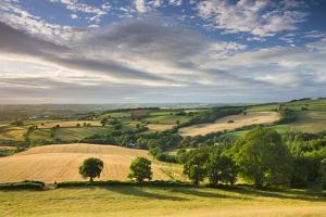 Beautiful Sky Above Summer Countryside, Raddon Hill, Crediton, Devon, England. Summer by Adam Burton