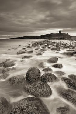Dunstanburgh Castle at Dawn from Embleton Bay, Northumberland, England. Spring (April) by Adam Burton