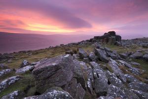 Spectacular Pink Sunrise Above Belstone Tor, Dartmoor, Devon, England. Winter by Adam Burton