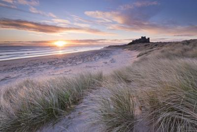 Sunrise over Bamburgh Beach and Castle from the Sand Dunes, Northumberland, England. Spring (March) by Adam Burton