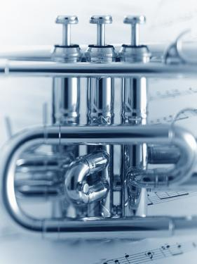 Cornet Section by Adam Gault