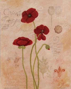 Poppy Fresco II by Adam Guan