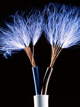 Electrical Wires by Adam Hart-Davis