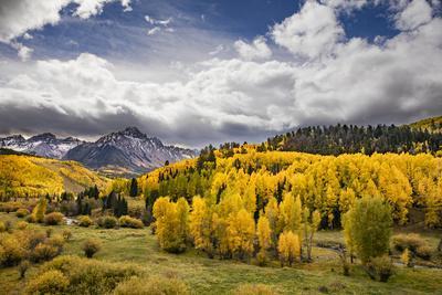 Autumn aspen trees and Sneffels Range, Mount Sneffels Wilderness, Colorado