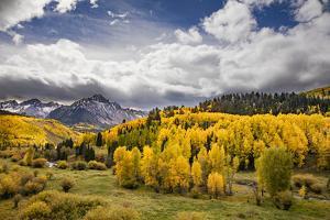 Autumn aspen trees and Sneffels Range, Mount Sneffels Wilderness, Colorado by Adam Jones