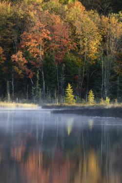 Autumn colors and mist on Council Lake at sunrise, Hiawatha National Forest, Michigan. by Adam Jones