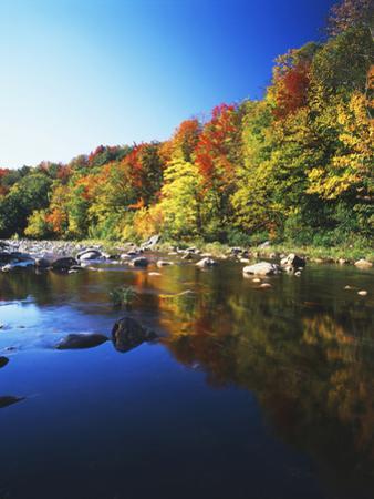 Autumn Trees Reflected in Deerfield River, Vermont, USA by Adam Jones