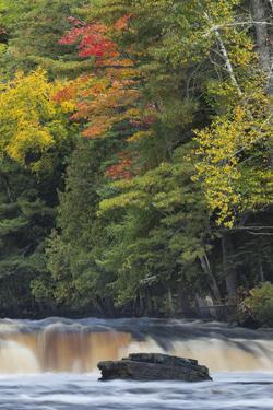Cascade on Tahquamenon Falls, Tahquamenon Falls State Park, Michigan by Adam Jones