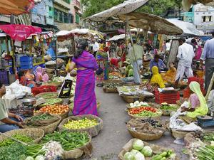 Colorful Fruit and Vegetable Market, Udaipur, India by Adam Jones