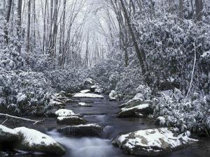 Cosby Creek in Winter, Great Smoky Mountains National Park, Tennessee, USA by Adam Jones