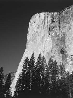 El Capitan, Yosemite National Park, California, USA by Adam Jones
