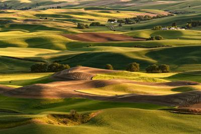 Expansive view of Palouse farming region of Eastern Washington State from high atop Steptoe Butte by Adam Jones
