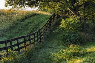 Farm fence at sunrise, Oldham County, Kentucky by Adam Jones