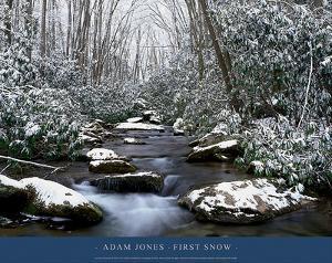 First Snow by Adam Jones