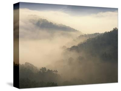 Fog-Filled Valley at Dawn, Red River Gorge Geological Area, Daniel Boone National Forest, Kentucky by Adam Jones