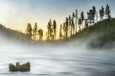 Gibbon River at sunrise, Yellowstone National Park, WyomingMontana, by Adam Jones