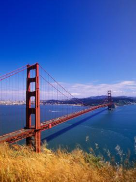 Golden Gate Bridge, San Francisco, California by Adam Jones