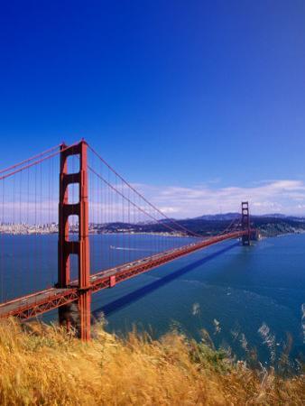 Golden Gate Bridge, San Francisco, California by Adam Jones