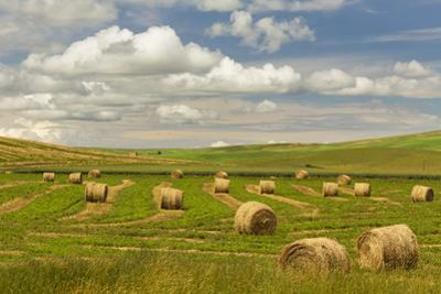 Hay bales and clouds, Palouse region of Eastern Washington State by Adam Jones