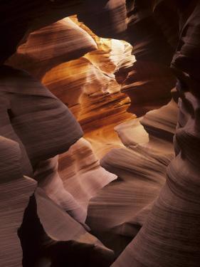 Interior of Lower Antelope Canyon, a Slot Canyon Near Page, Arizona, USA by Adam Jones