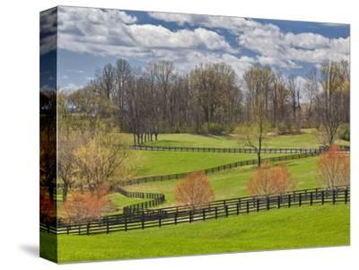 Large Field and Fence Line in Louisville, Kentucky, Usa by Adam Jones