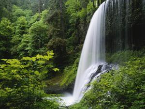 Middle North Falls, Silver Falls State Park, Oregon, USA by Adam Jones