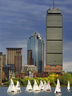 Mit Sailing Team Practicing in Charles River, Boston, Massachusetts, USA by Adam Jones